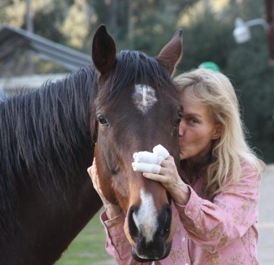 W-Shayna-horse